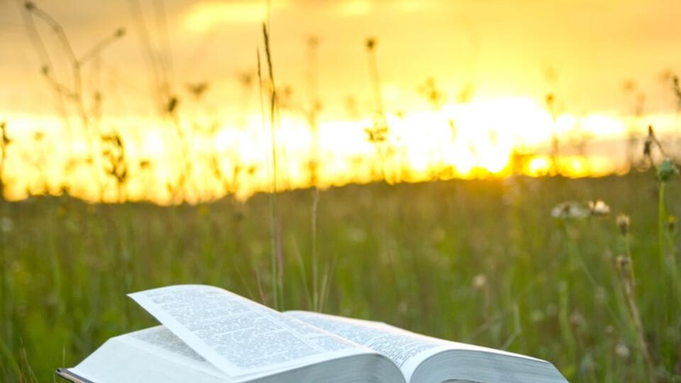 Wednesday Bible Study w/ Pastor Maury