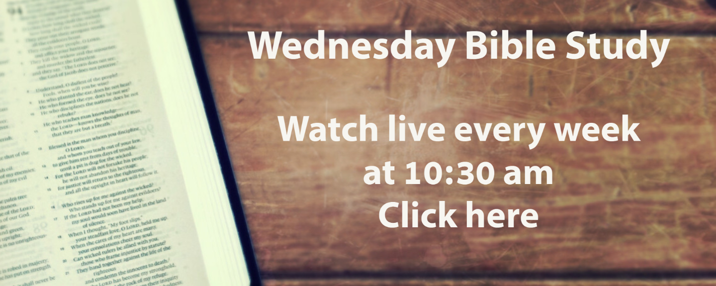 WEBS Live